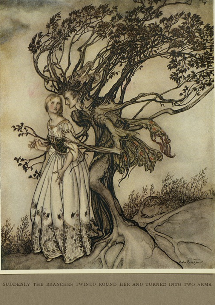 Extraordinary, Arthur Rackham, Brother Grimm, 1917
